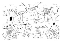 Waldtiere Waldtiere Schulideen Ausmalbild